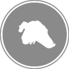 Lapiceros Logo